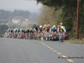 2014-Gorey_3_Day_Stage_3 078.jpg