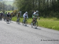2014-Gorey_3_Day_Stage_4 046.jpg