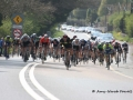 2014-Gorey_3_Day_Stage_4 088.jpg